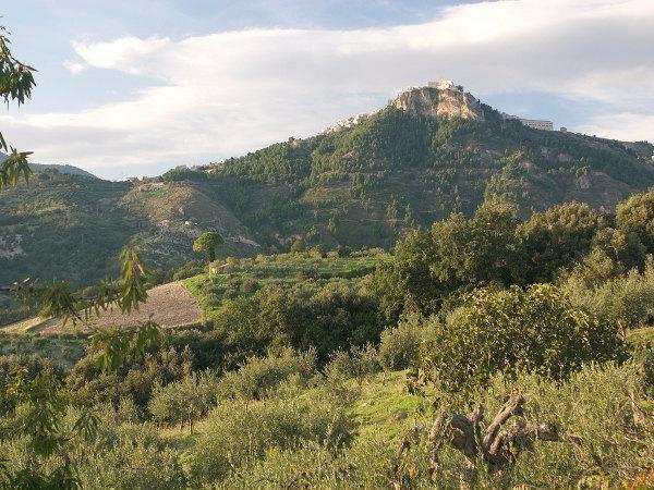 italian-wine-discovery