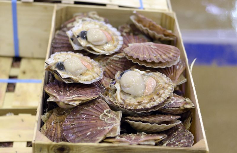 """British and French fishermen have been locked in an angry dispute over fishing rights, subbed the """"Scallop Wars"""" (AFP Photo/ADRIEN MORLENT)"""