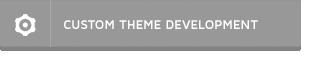 Theme Customizations