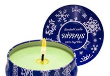HITHYS 8.1oz Eucalyptus Mint Scented Candle, Refreshing Smell for Women & Men, 45Hrs Up Long Lasting Big Travel Tin Candle