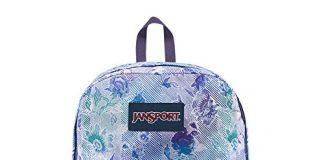 JanSport Superbreak Backpack - Striped Floral - Classic, Ultralight