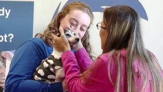 Dutchess the fox terrier reunites with her owner Katheryn Strang