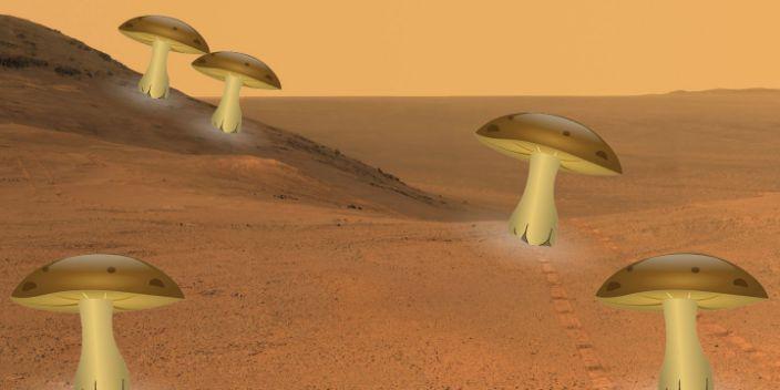 Photo credit: NASA/JPL-Caltech/Cornell/Arizona State University/basker_dhandapani