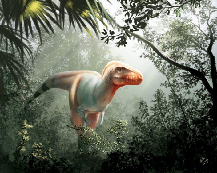 NovelTyrannosaurid_Whole_01_Online_202002070027