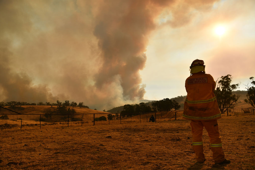 Firefighters watched a bushfire in New South Wales