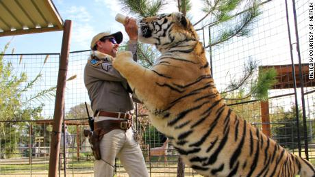'Tiger King' is the weird docu-series distraction we can use right now