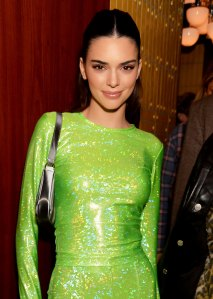 Kendall Jenner Responds to Fan Begging Her to Stay Home Amid Coronavirus