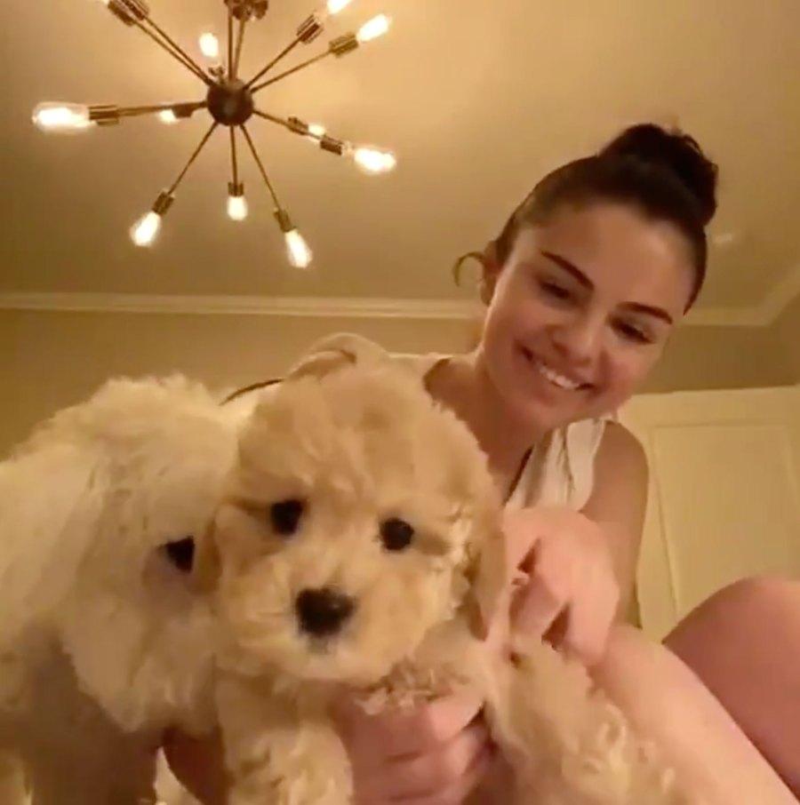 Selena Gomez Adopts New Puppy Named Daisy
