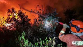 A firefighter battles a forest blaze in Xichang in China's southwestern Sichuan province