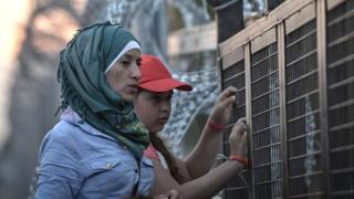 Migrants at Hungary border fence, 2015 file pic