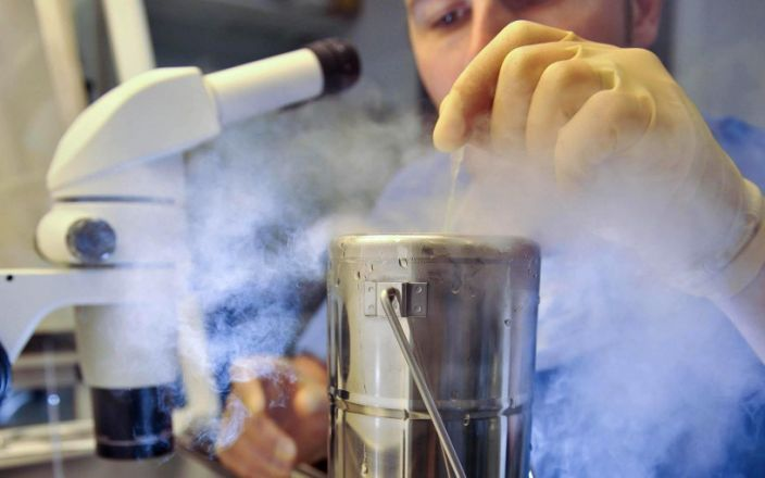 The number of women freezing their eggs has risen five-fold since 2013, official figures show. A scientist dropping an embryo, which is on a CryoLeaf, into a flask of liquid nitrogen to instantly freeze it as part of the vitrification process. - PA