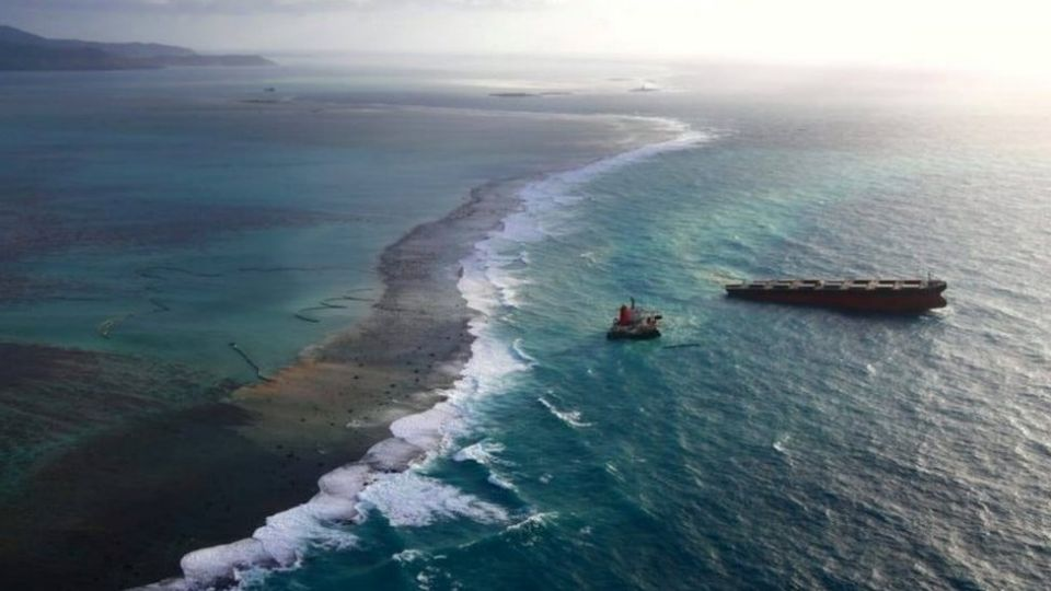 The MV Wakashio struck a coral reef near a sanctuary for rare wildlife on 25 July