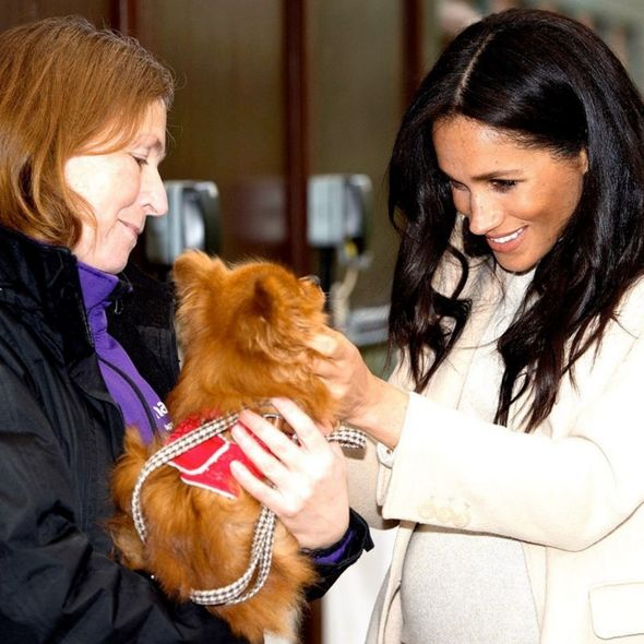 Meghan Markle star sign: Meghan with a dog