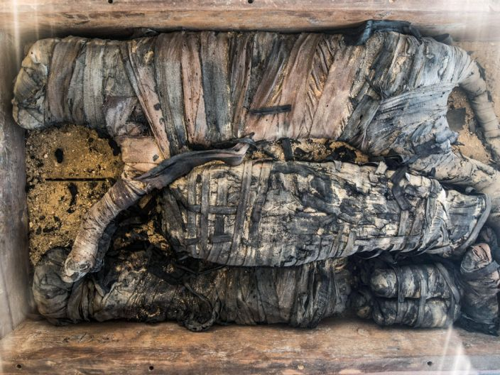 """A mummy of a cat displayed after the announcement of a new discovery in the Saqqara necropolis, November 23, 2019. <p class=""""copyright"""">Khaled DesoukiI/AFP via Getty</p>"""