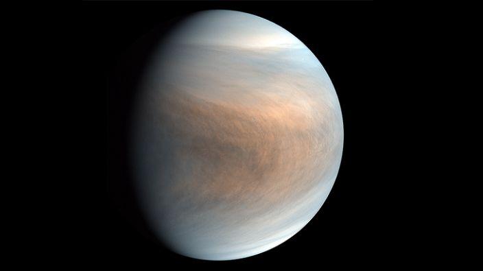 Planet Venus: The phosphine is detected at mid-latitudes