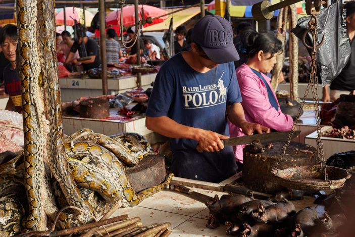 """A market trader slicing up fruit bats in Tomohon Market in northern Sulawesi, Indonesia. <p class=""""copyright"""">Quentin Martinez/Wildlife Photographer of the Year</p>"""