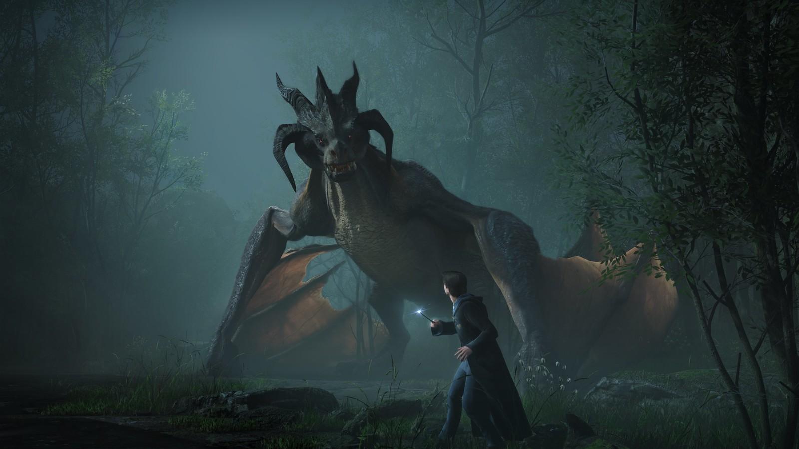 Hogwarts Legacy - Dragon