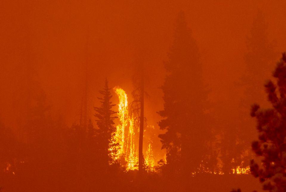 Creek Fire burns near Shaver Lake on Sunday, September 6, 2020.