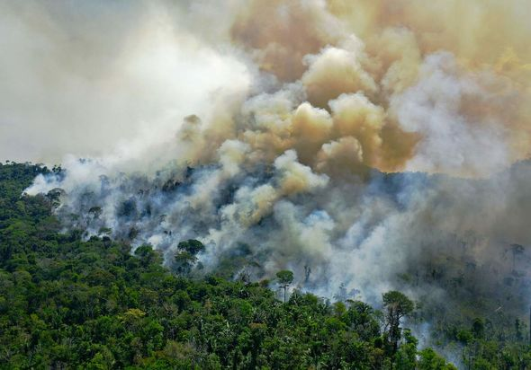 Climate destruction: Increased temperatures have translated to increased incidents of wild fires