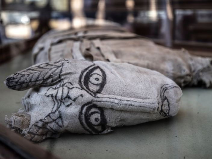 """A feline mummy displayed after the announcement of a new discovery in the Saqqara necropolis, November 23, 2019 <p class=""""copyright"""">Khaled Desouki/AFP via Getty</p>"""
