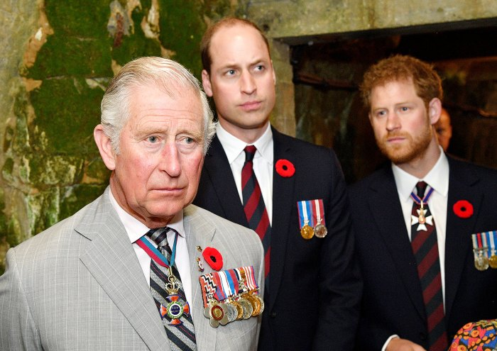Prince Charles Might Help Prince William, Prince Harry Reconcile