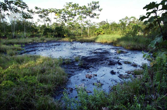 Crude oil waste pit