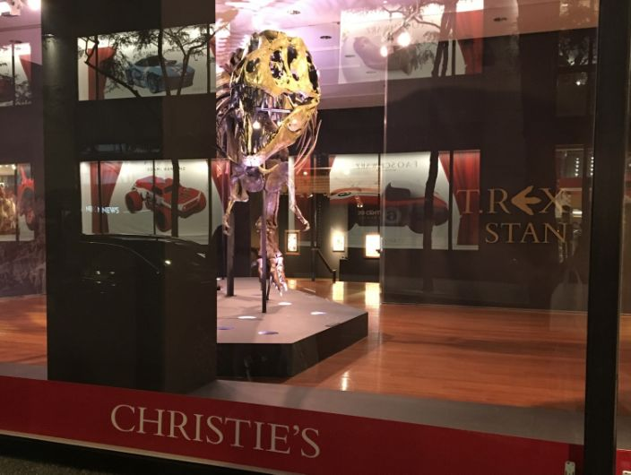 """The T rex named Stan was auctioned off at Christie's in New York City for $31.8 million on October 6, 2020. <span class=""""copyright"""">Aylin Woodward/Business Insider</span>"""