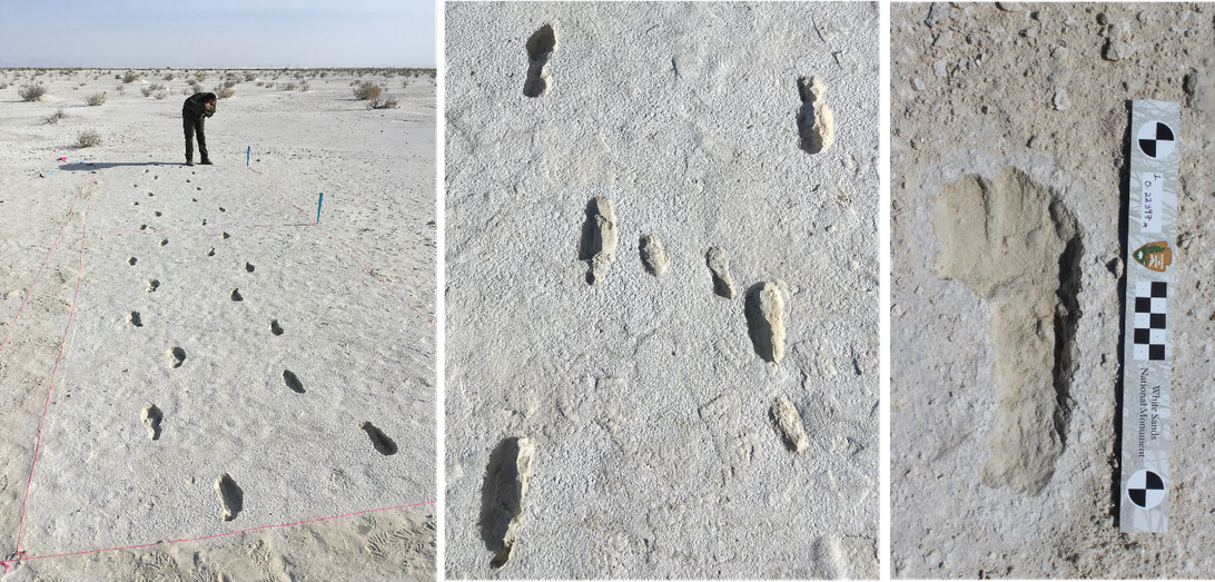 white-sands-human-footprints-adult-and-child.png